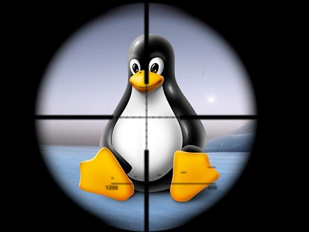 Malware: questa volta nel mirino c'è Linux